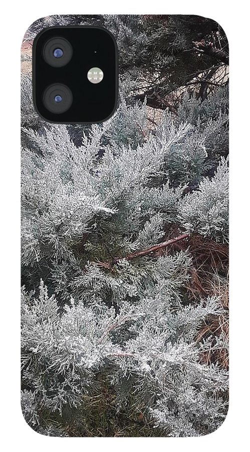 Scenery IPhone 12 Case featuring the photograph First Frost by Ariana Torralba