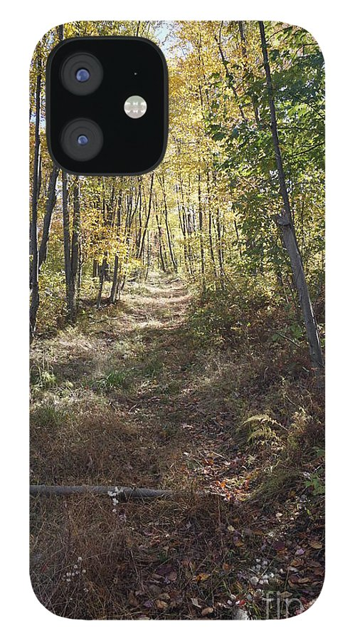 Hidden Trail IPhone 12 Case featuring the photograph Hidden Trail by Chris Naggy