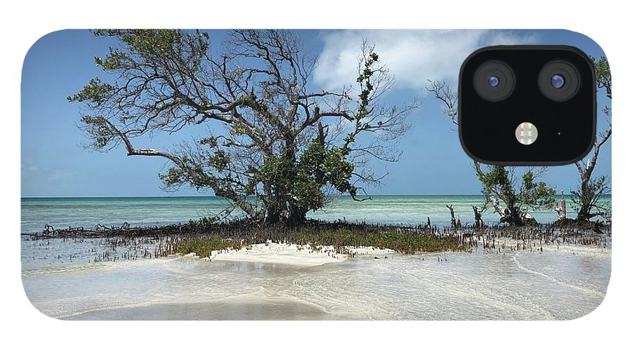Key West Florida Waters IPhone 12 Case featuring the photograph Key West Waters by Ashley Turner