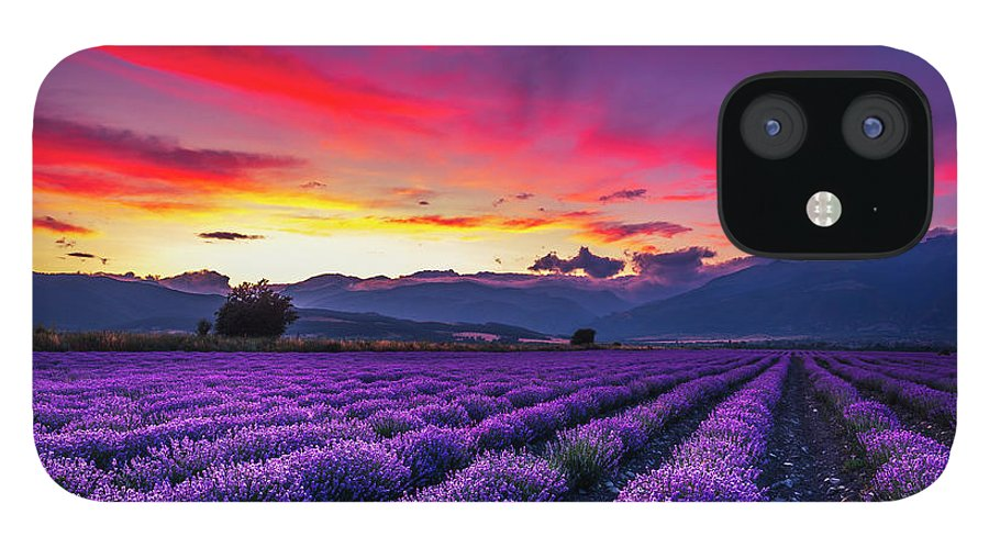 Dusk IPhone 12 Case featuring the photograph Lavender Season by Evgeni Dinev