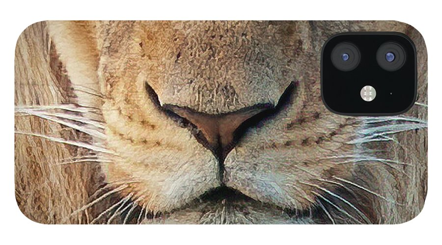Lion IPhone 12 Case featuring the photograph Lion by Steven Sparks