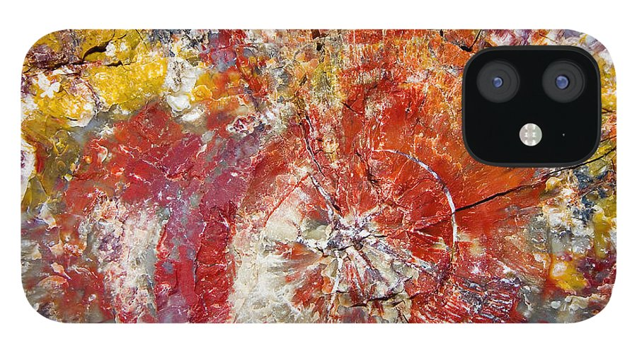 Petrified Wood Stone Texture Abstract Color Skip Hunt IPhone 12 Case featuring the photograph Painted Desert Wood 1 by Skip Hunt