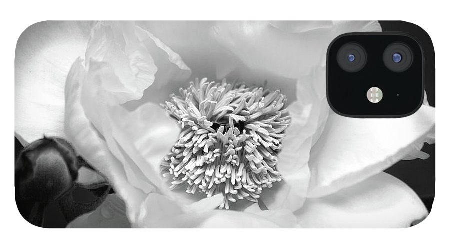 Black And White Flower Photography IPhone 12 Case featuring the photograph Peony by Trevor Slauenwhite