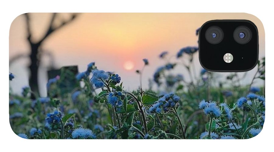 Flowers IPhone 12 Case featuring the photograph Sunset Behind Flowers by Prashant Dalal