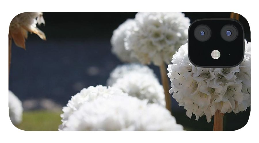 Aliums IPhone 12 Case featuring the photograph White Aliums by Vicki Cridland