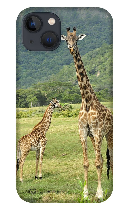 Thomas Marent iPhone 13 Case featuring the photograph Giraffe Mother And Calftanzania by Thomas Marent