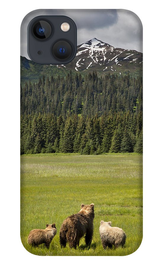 Richard Garvey-williams iPhone 13 Case featuring the photograph Grizzly Bear Mother And Cubs In Meadow by Richard Garvey-Williams