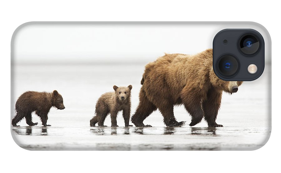 Richard Garvey-williams iPhone 13 Case featuring the photograph Grizzly Bear Mother And Cubs Lake Clark by Richard Garvey-Williams