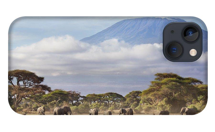 Nis iPhone 13 Case featuring the photograph Mount Kilimanjaro Amboseli by Richard Garvey-Williams
