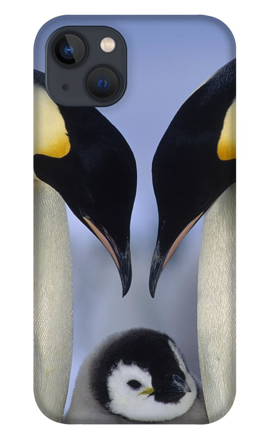 00140140 iPhone 13 Case featuring the photograph Emperor Penguin Family by Tui De Roy