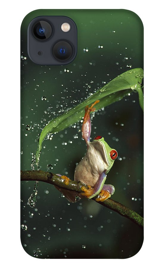 Mp iPhone 13 Case featuring the photograph Red-eyed Tree Frog In The Rain by Michael Durham