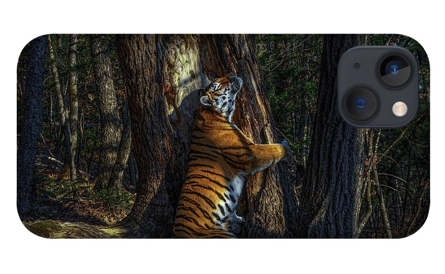 00643873 iPhone 13 Case featuring the photograph The Embrace by Sergey Gorshkov