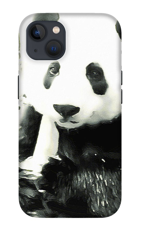 giant-panda-digital-art-douglas-brown.jpg?&targetx=1&targety=7&imagewidth=1144&imageheight=1519&modelwidth=877&modelheight=1519&backgroundcolor=202320&orientation=0