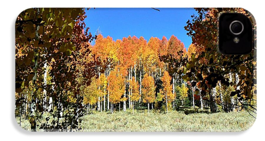 Autumn Trees Dixie National Forest Utah IPhone 4 Case for Sale by ...