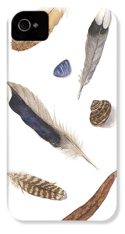 Feathers IPhone 4 Case featuring the painting Found Treasures by Lucy Arnold