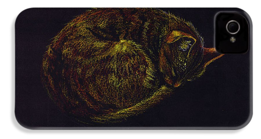 A Cat Soundly Asleep-oil Pastel IPhone 4 Case featuring the painting Sound Asleep II by Mui-Joo Wee