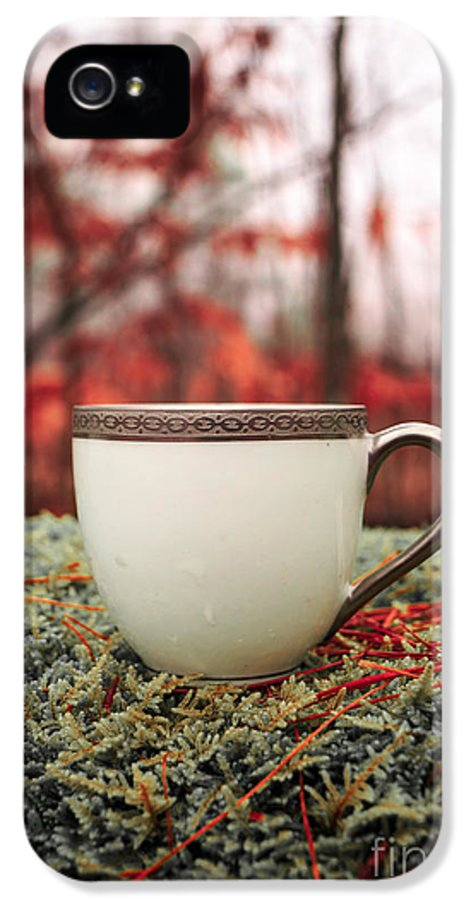 Tea IPhone 5 / 5s Case featuring the photograph Antique Teacup In The Woods by Edward Fielding