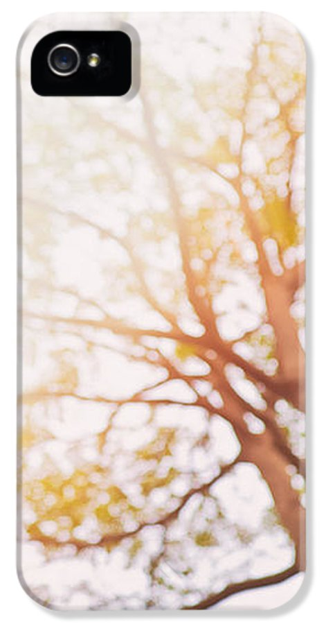 Abstract IPhone 5 Case featuring the photograph Beneath A Tree 14 5284 Diptych Set 1 Of 2 by U Schade