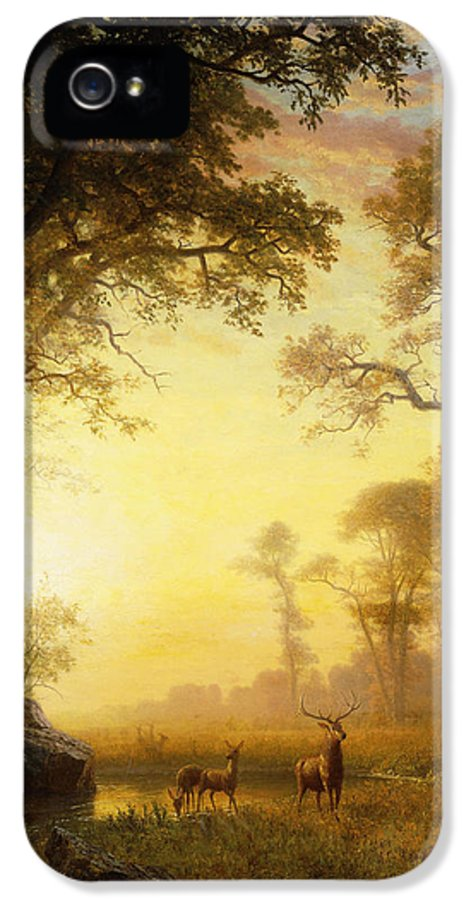 19th Century IPhone 5 Case featuring the painting Light In The Forest by Albert Bierstadt