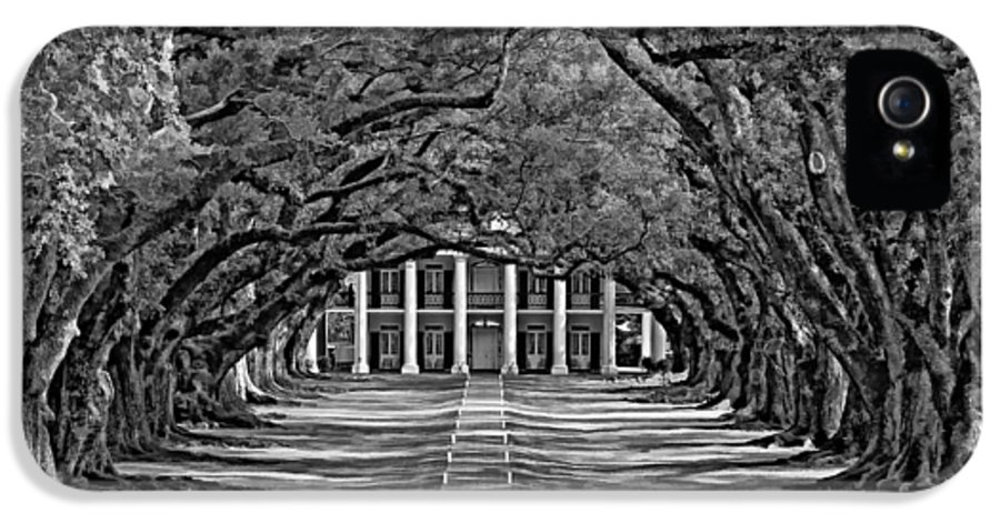 Oak Alley Plantation IPhone 5 Case featuring the photograph Oak Alley Bw by Steve Harrington