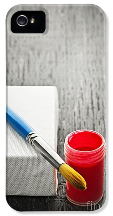 Brush IPhone 5 Case featuring the photograph Paintbrush On Canvas by Elena Elisseeva