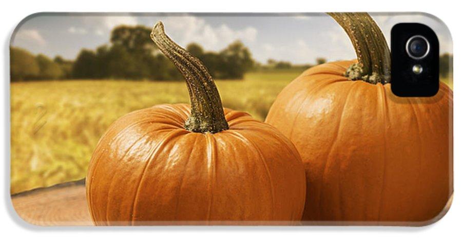 Pumpkin IPhone 5 / 5s Case featuring the photograph Pumpkins by Amanda Elwell