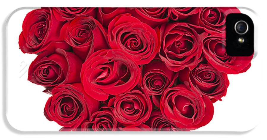 Rose IPhone 5 Case featuring the photograph Rose Heart by Elena Elisseeva