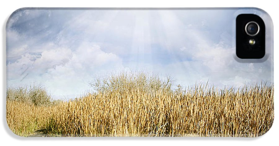 Sky IPhone 5 Case featuring the photograph Wetland Walk by Les Cunliffe