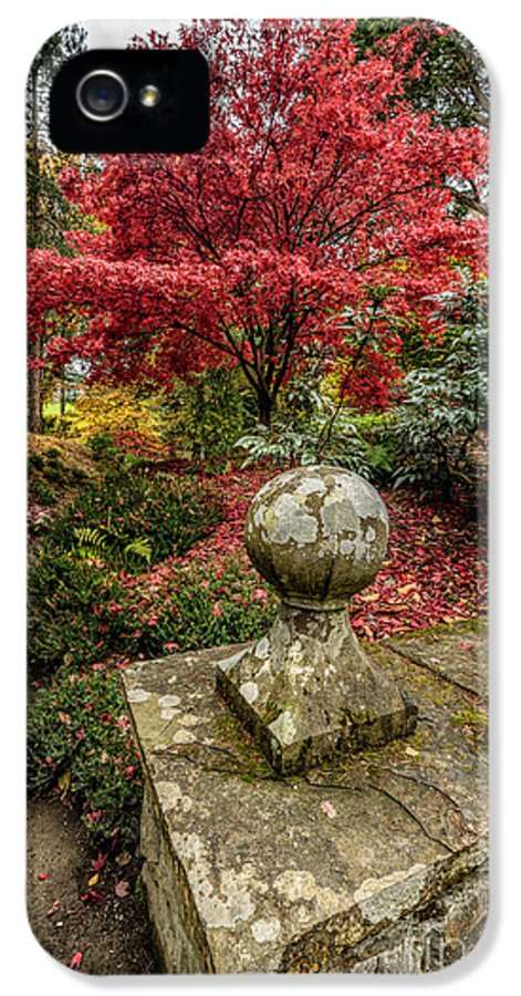 Acer IPhone 5 Case featuring the photograph Autumn Path by Adrian Evans