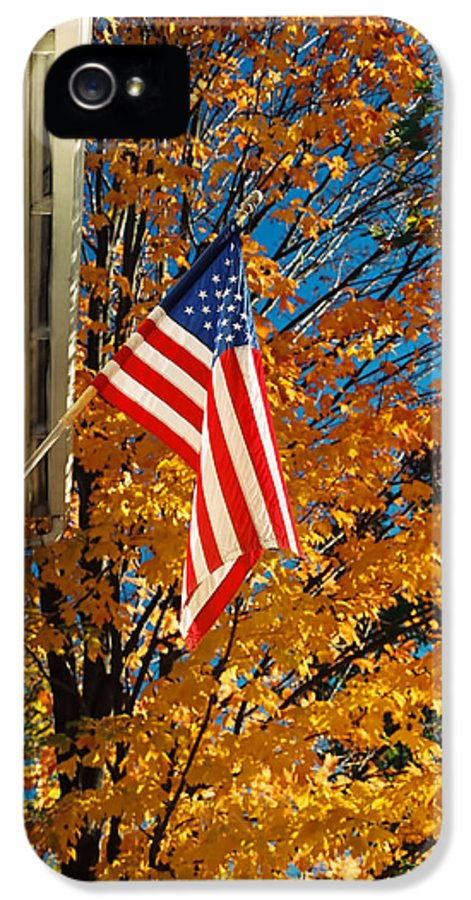 Flag IPhone 5 Case featuring the photograph Standing Proud by Joann Vitali
