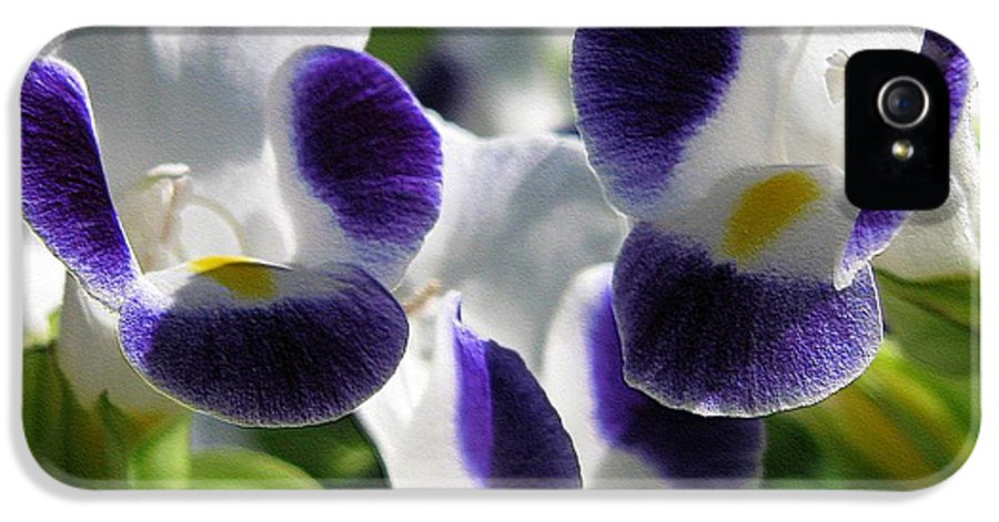 Mccombie IPhone 5 Case featuring the photograph Torenia From The Duchess Mix by J McCombie