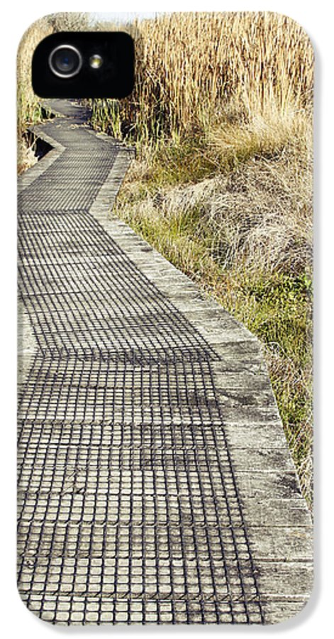 Boardwalk IPhone 5 Case featuring the photograph Wetland Walk by Les Cunliffe