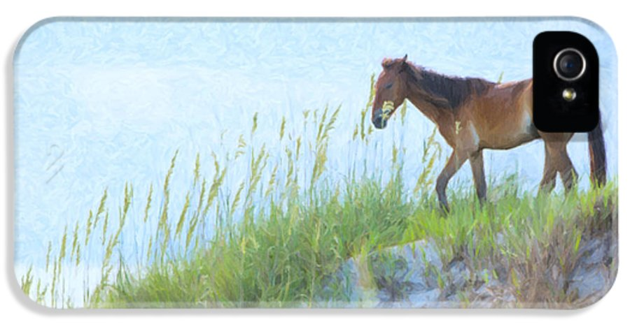 Horse IPhone 5 Case featuring the photograph Wild Horse On The Outer Banks by Diane Diederich