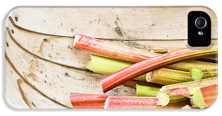 Crop IPhone 5 / 5s Case featuring the photograph Rhubarb by Tom Gowanlock