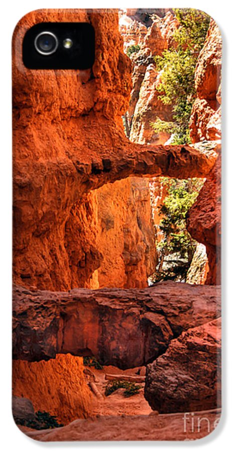 Bryce Canyon IPhone 5 Case featuring the photograph A Bridge by Robert Bales