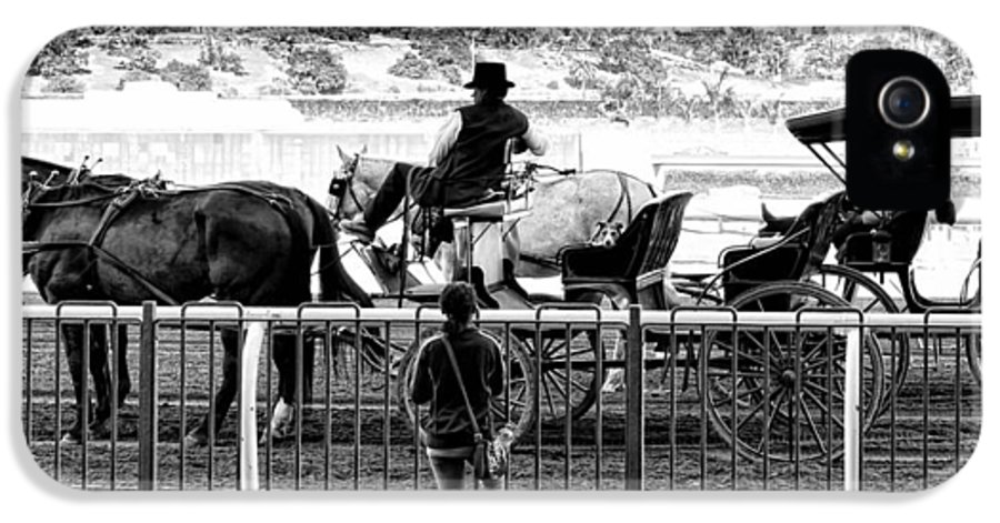 Horse IPhone 5 Case featuring the photograph A Casual Observer by Camille Lopez