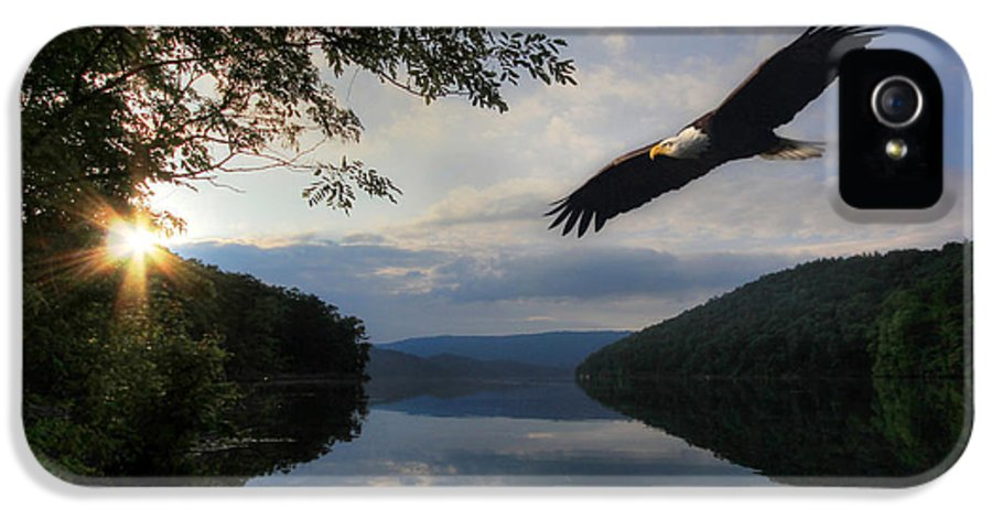 Eagle IPhone 5 Case featuring the photograph A New Beginning by Lori Deiter