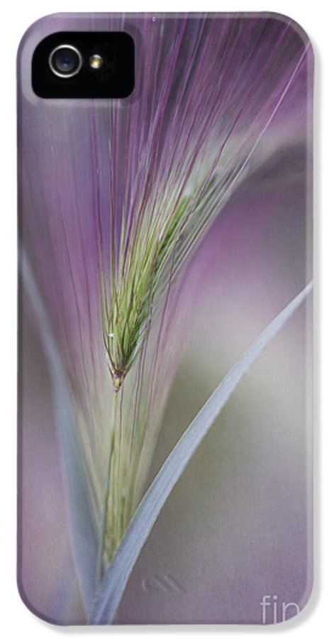 Texture IPhone 5 Case featuring the photograph A Single Whisper by Priska Wettstein