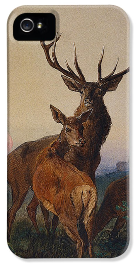 Stag IPhone 5 Case featuring the painting A Stag With Deer In A Wooded Landscape At Sunset by Charles Jones