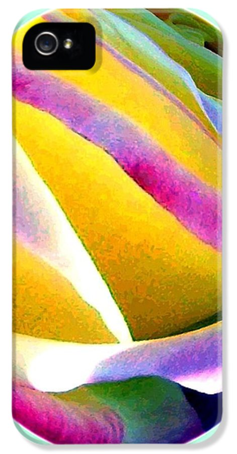 Abstract Rose Oval IPhone 5 Case featuring the digital art Abstract Rose Oval by Will Borden