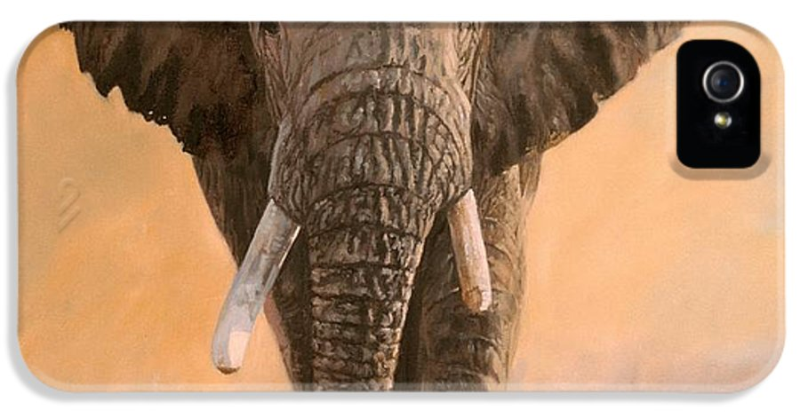 Elephant IPhone 5 Case featuring the painting African Elephants by David Stribbling