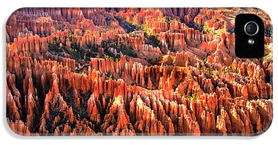 Bryce Canyon IPhone 5 Case featuring the photograph Afternoon Hoodoos by Robert Bales
