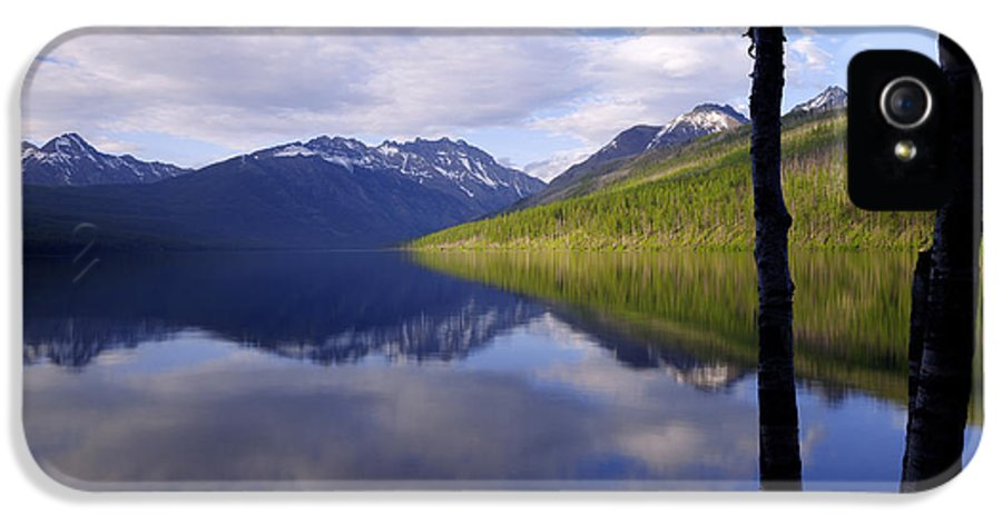 Nature IPhone 5 Case featuring the photograph Afternoon Light by Chad Dutson