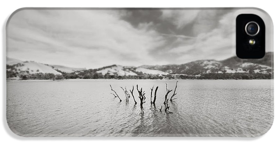 Lake Del Valle IPhone 5 Case featuring the photograph All Together Now by Laurie Search