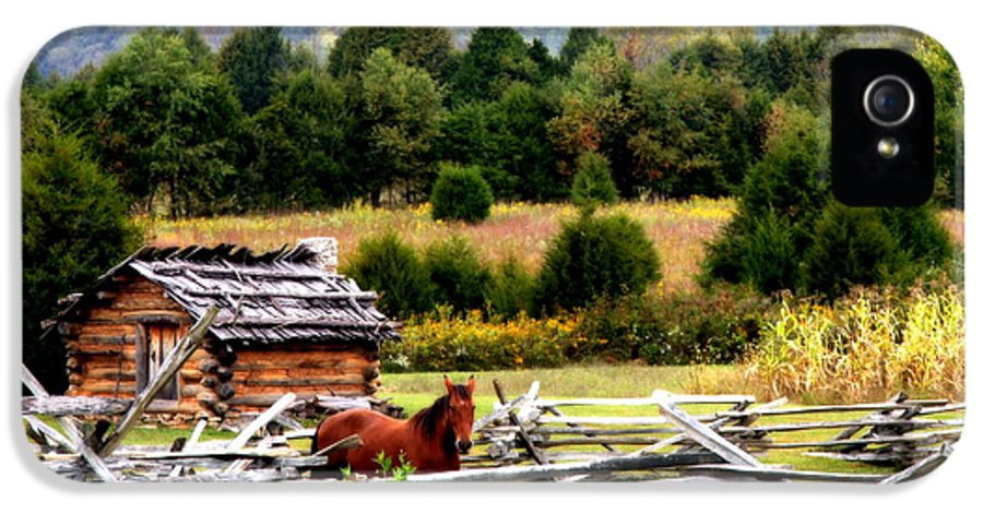 Equestrian IPhone 5 Case featuring the photograph Along The Wilderness Trail by Karen Wiles