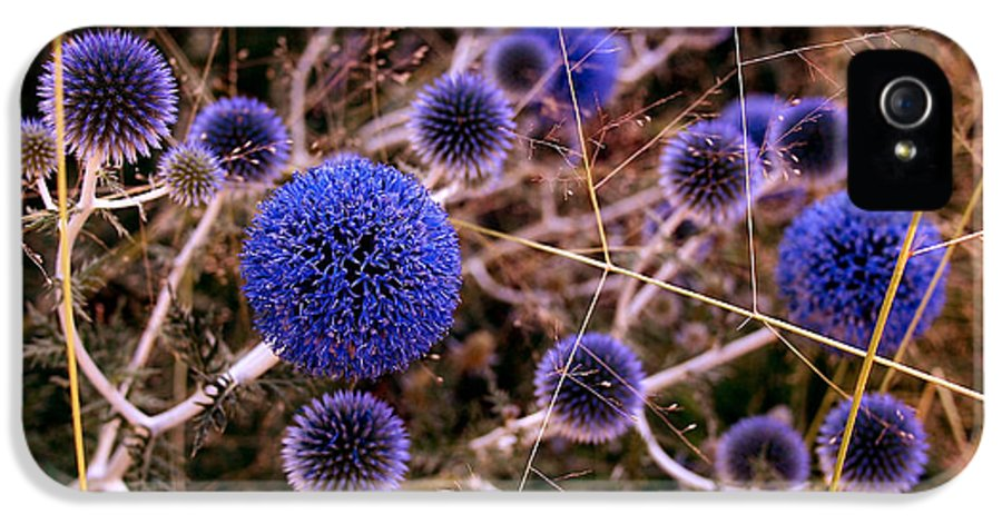 Thistle IPhone 5 Case featuring the photograph Alternate Universe by Rona Black