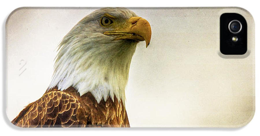 Bald Eagle IPhone 5 Case featuring the photograph American Bald Eagle With Flag by Natasha Bishop