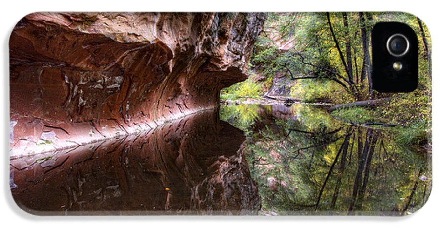 West Fork IPhone 5 Case featuring the photograph An Autumn Day In West Fork by Saija Lehtonen