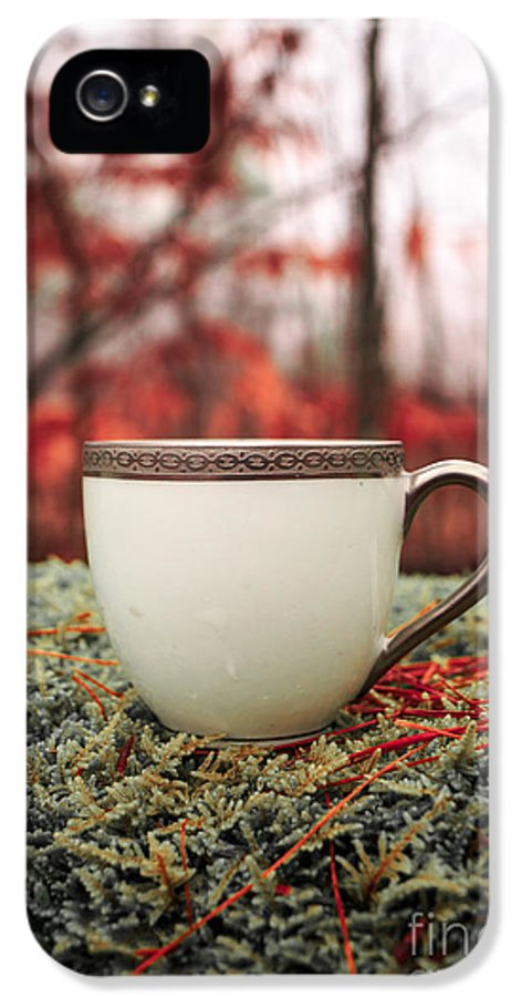Tea IPhone 5 Case featuring the photograph Antique Teacup In The Woods by Edward Fielding