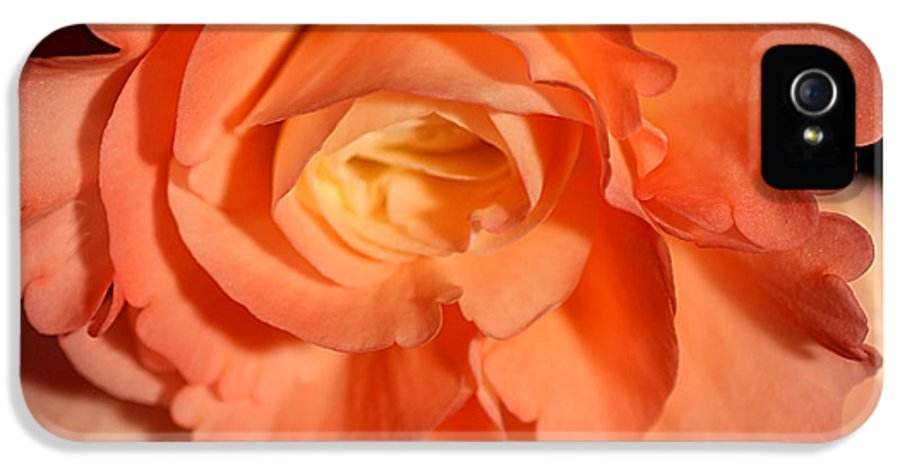 Flowers IPhone 5 Case featuring the pyrography Apricot Pink Tuberous Begonia by Carole-Anne Fooks